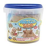 Miracle Sand Fun- 2 Pounds- Sea Moulds