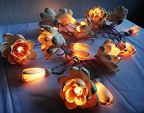 Thai Vintage Lotus Sesbania Artificial Flower 20 String Lights Outdoor Patio Party Christmas Lighting - Ultra Pro Mini Helmet