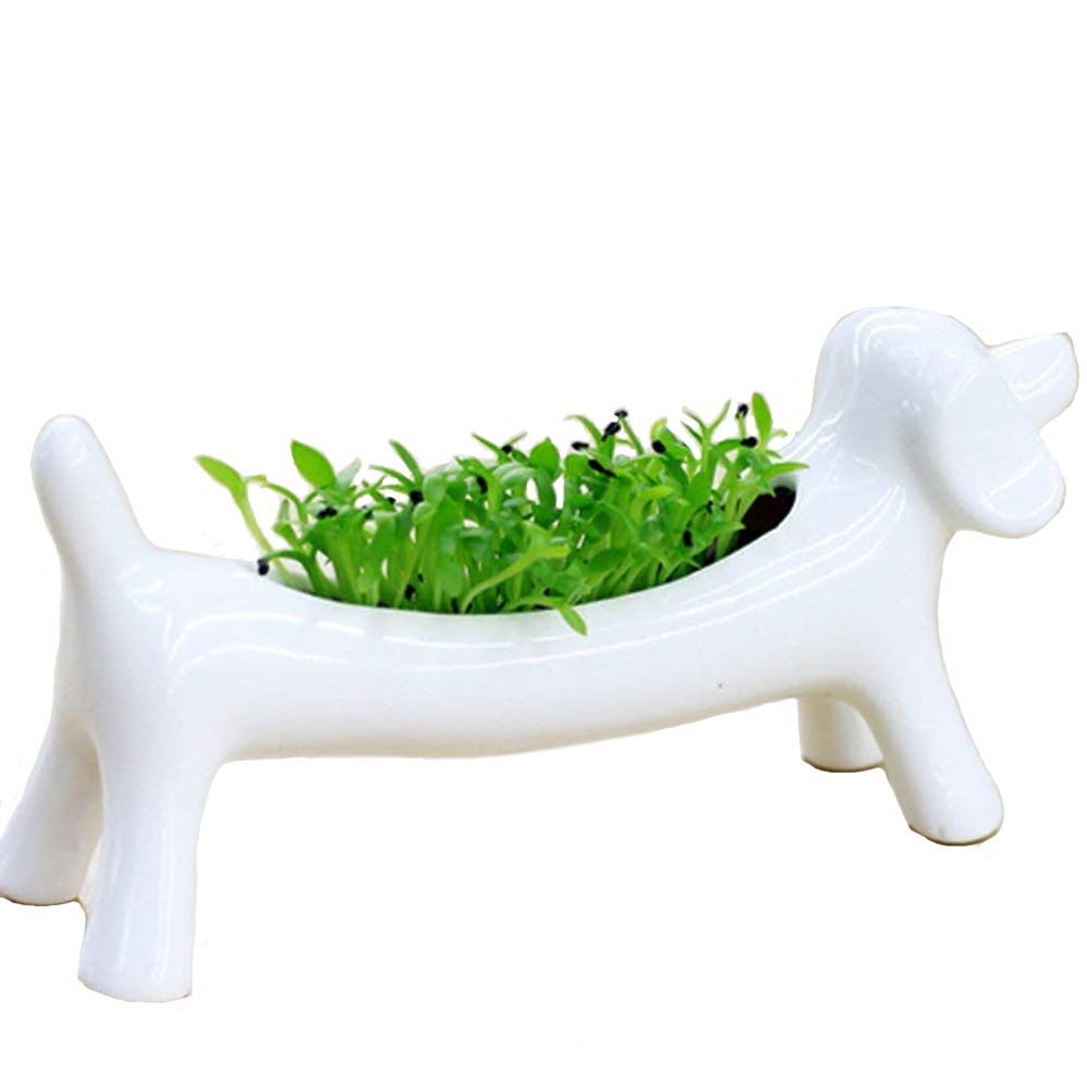 White Ceramic Animal Dog Flower Green Plant Pot Ornaments Potted Succulent Micro Mini Desktop Landscape Basin Candlesticks holders ashtray Decoration