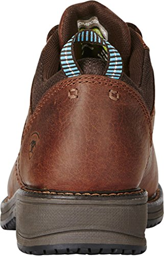 Static Dissipative Clogs Brown Shoes Ariat Womens Nutty Comp Oxford Work Casual Toe IwAHqpO