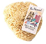 The Natural Sea Sponge, 7 to 8-Inch, Wool