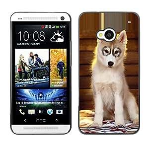 Vortex Accessory Carcasa Protectora Para HTC ONE ( M7 ) - Husky Puppy Alaskan Malamute Dog -