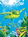 Dimensions Crafts 73-91471 Paint Works Paint by Number Kit, Swimming Turtle