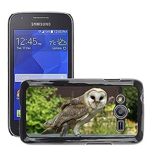Etui Housse Coque de Protection Cover Rigide pour // M00112524 Ave Rapaz Pájaros Naturaleza Búho // Samsung Galaxy Ace4 / Galaxy Ace 4 LTE / SM-G313F
