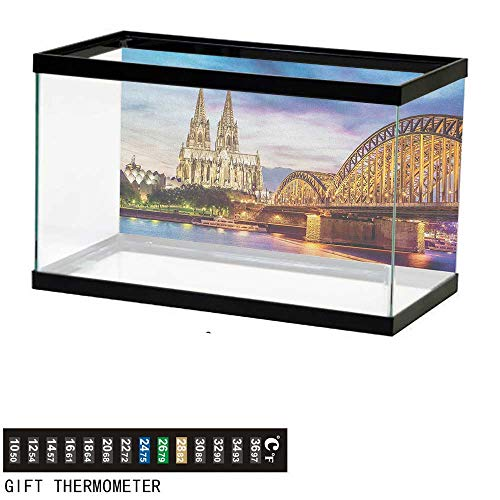 Jinguizi EuropeanFish Tank BackdropIlluminated Dom in Cologne Old Bridge and Rhine Sunset European Culture Print24 L X 16