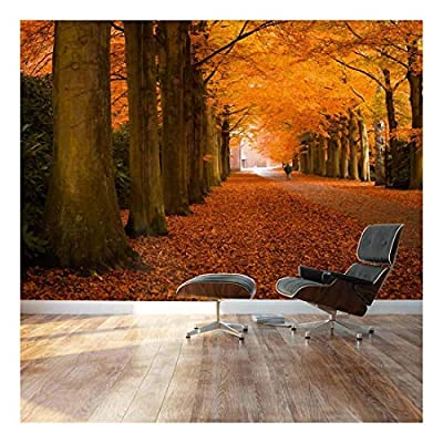 Dazzling Visual, Autumn Orange leaved Trees line Path Landscape Wall Mural, Premium Creation