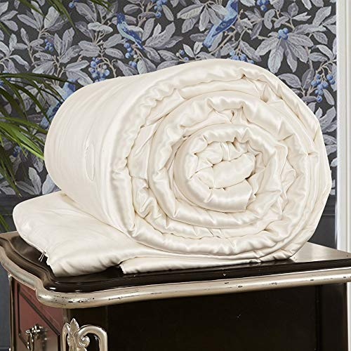 LilySilk All Season Silk Comforter with Silk Shell 100% Silk Duvet Queen 87x90 - Comforter Ivory Silk