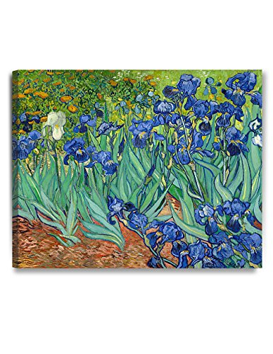 DecorArts - Irises in the Garden, by Vincent Van Gogh. The Classic Arts Reproduction. Art Giclee Print On Canvas, Stretched Canvas Gallery Wrapped. (Monet Van Gogh)
