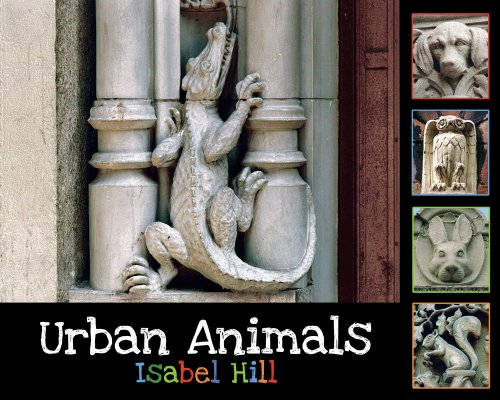 (Urban Animals)