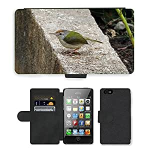 hello-mobile PU LEATHER case coque housse smartphone Flip bag Cover protection // M00137583 Común Tailorbird Orthotomus Sutorius // Apple iPhone 4 4S 4G