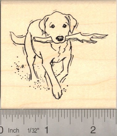 Labrador Retriever Fetching Stick Rubber Stamp