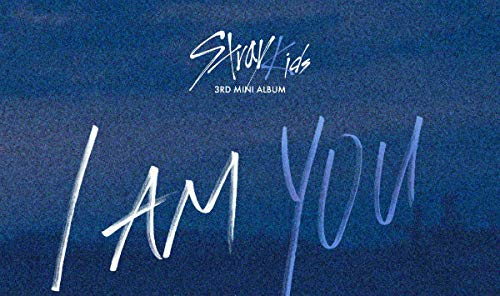 CD : Stray Kids - I Am You (Photo Book, Photos, Asia - Import)