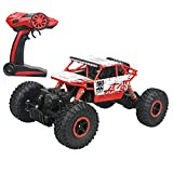 PIPIHUA 2.4Ghz 1/18 RC Rock Crawler Vehicle Toy 4 WD Fast Race Monster ...