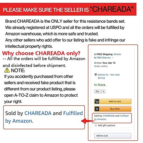 CHAREADA 22 Pack Resistance