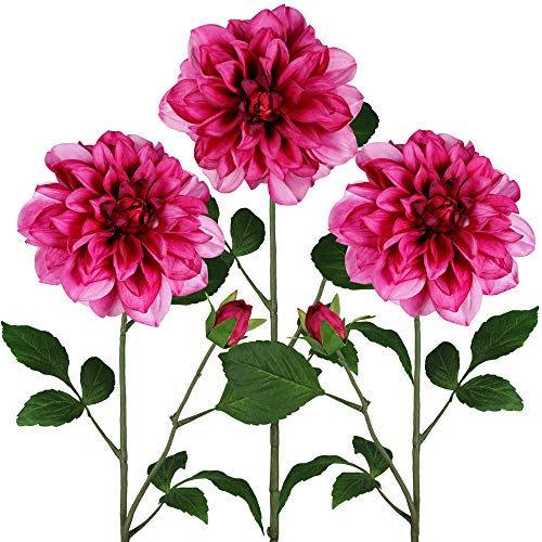 3 Pcs Fuchsia Dahlia Artificial Flowers Fuchsia Dahlia Flower Blooms with Buds Silk Dahlia Floral Stems 5.9″ Bloom x 29″ Tall for Arrangements Centerpieces Bouquets Wedding Spring Easter Decoration