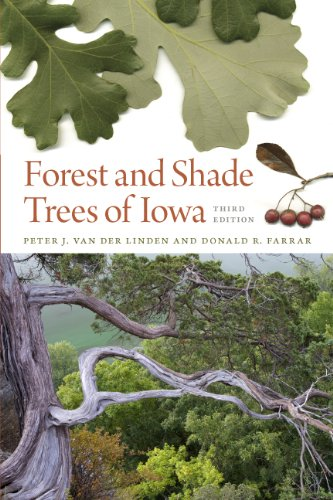 Forest and Shade Trees of Iowa (Bur Oak - Tree Shades