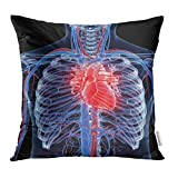 Emvency Throw Pillow Covers Cases Blue Anatomy 3D Rendered Medically Accurate of The