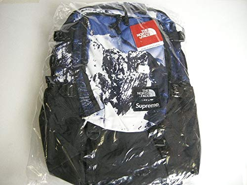 2017AW SupremeシュプリームThe North face/ザ ノースフェイスMountain Print Expedition Backpackマウンテン エクスペディション バックパック/リュックサック/バッグ/BOX  mountain B07QJC87LL