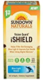Sundown Naturals Vision Guard iShield Softgels, 60 Count (Pack of 6)