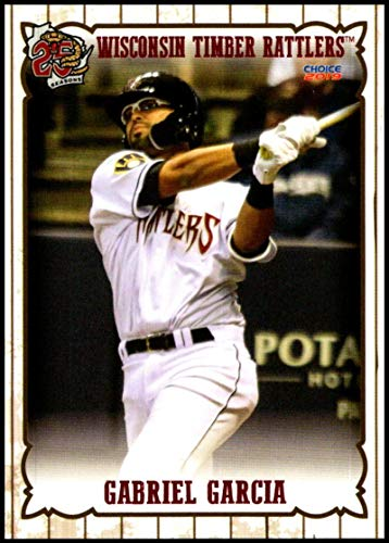 2019 Choice Wisconsin Timber Rattlers #8 Gabriel Garcia NM-MT Wisconsin Timber Rattlers Officially Licensed MiLB Baseball Trading Card ()
