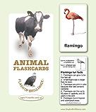 FLASH OF BRILLIANCE ANIMAL FLASHCARDS (FLASH OF BRILLIANCE FLASHCARDS)