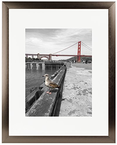 Frametory, 16x20 Satin Brushed Aluminum Photo Frame with Ivory Color Mat for 11x14 Picture & Real Glass (Dark Brown)