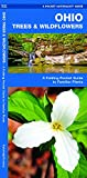 Ohio Trees & Wildflowers: A Folding Pocket Guide to Familiar Plants (Wildlife and Nature Identification)