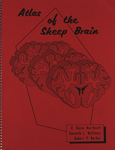 Atlas of the Sheep Brain