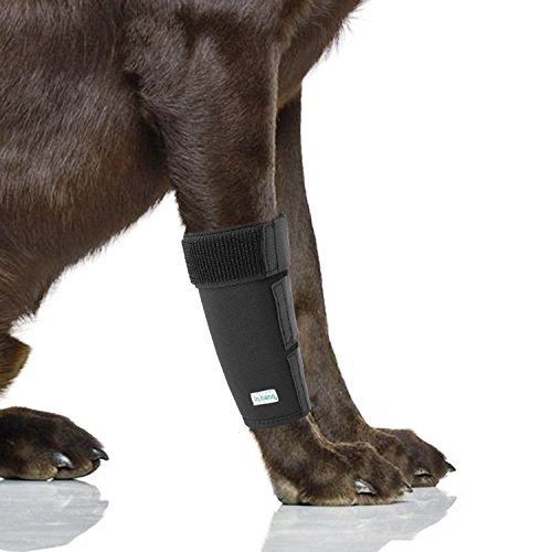 IN HAND Dog Leg Brace, Pair of Dog Canine Leg Wrap Front Leg Compression Brace Protects Wounds Brace Heals and Prevents Injuries and Sprains, Front Leg Wrap for Dog
