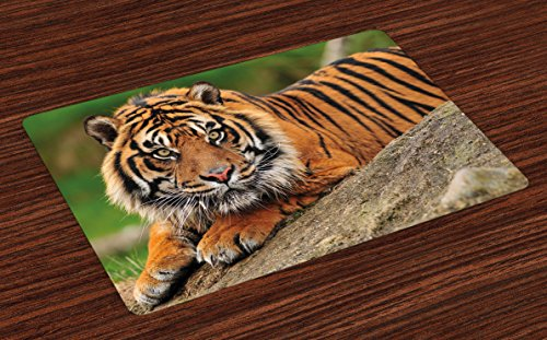 Ambesonne Tiger Place Mats Set of 4, Noble Beast Crouching on a Rock Sumatrian Large Cat Nature Photography, Washable Fabric Placemats for Dining Room Kitchen Table Decor, Black Orange