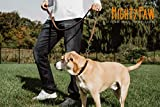 Mighty Paw Leather Training Collar, Martingale