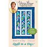 Quilt In A Day Eleanor Burns Patterns, Braid in a Day