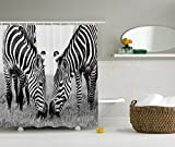 Animal Shower Curtain Zebra Print Decor by Ambesonne, National Park and Zebras African Wildlife Picture Monochrome Effect Print, Fabric Bathroom Shower Curtain Set with Hooks, Black and White Gray