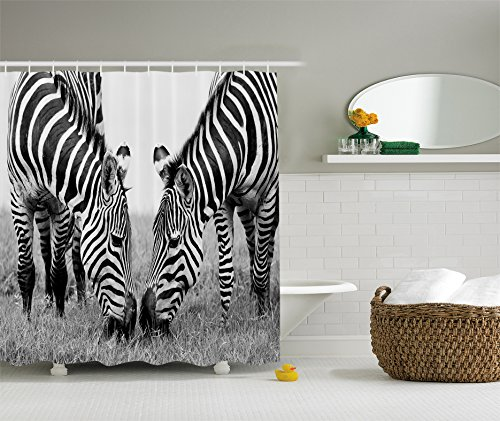 Animal Shower Curtain Zebra Print Decor by Ambesonne, National Park and Zebras African Wildlife Picture Monochrome Effect Print, Fabric Bathroom Shower Curtain Set with Hooks, Black and White - Print Zebra Shower