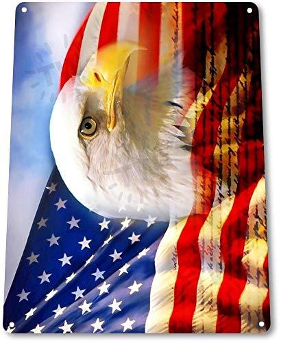 (NGFD TIN Sign Eagle Flag Bald American Stars Stripes Metal Decor Patriotic Art A348)