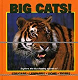 Big Cats (Our Wild World)