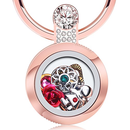 Desberry Girl's Beautiful Garden Cell Phone Locket Phone Stand Finger Ring Holder,DIY Living Memory Locket Stainless Steel Toughened Glass Lockets with Swarovski Zircon,6 Charms - Crystal Phone Swarovski Charm Cell