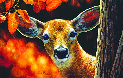 Surprise - Deer in the Woods Wildlife Jigsaw Puzzle- 500 Pc Jigsaw Puzzle by SunsOut