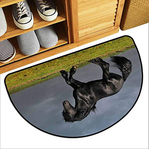 DILITECK Outdoor Door mat Horse Decor Black Friesian Stallion Gallop in Sunset Stormy Weather Nature Outdoors Hard and wear Resistant W31 xL20 Green Black Grey