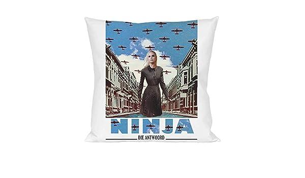 Die Antwoord Enter The Ninja Pillow: Amazon.es: Hogar