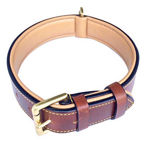Blueberry Leather - Soft Touch Collars Padded Leather Dog Collar, Large Brown - Genuine Real Leather, 24