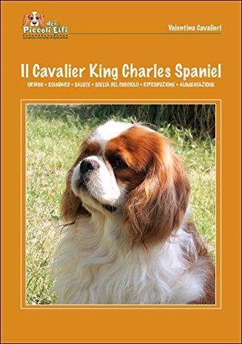 cavalier service manual - 5
