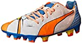 PUMA Men's evoPOWER1.2POPFG-M, White/Orange Clownfish/Electric Blue Lemonade, 10 M US