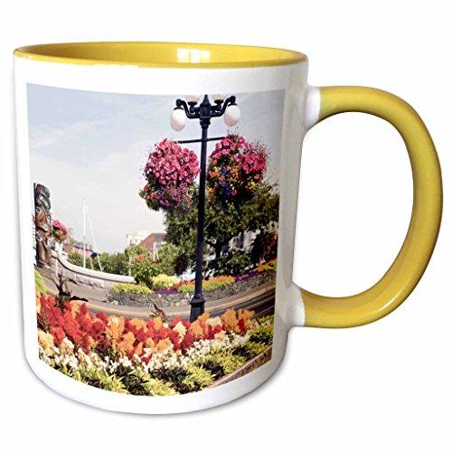 3dRose Danita Delimont - British Columbia - Hanging Flower Baskets, Victoria, B.C. -CN02 SWS0024 - Stuart Westmorland - 11oz Two-Tone Yellow Mug (mug_70769_8) (Christmas Gift Baskets Victoria Bc)