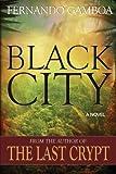 Black City (Ulysses Vidal Adventure Series) (Volume 2)