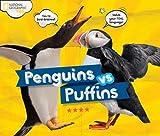 Penguins vs. Puffins (Animals)
