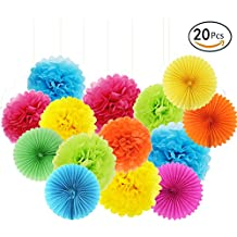 APLANET Set of 20 Rainbow Color Paper Pom Poms and Paper Folding Fans, 5 Colors, for Decorating Party, Shop or Wedding