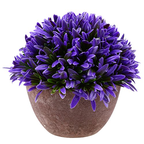 Whosee Bluegrass Purple Artificial Fake Green