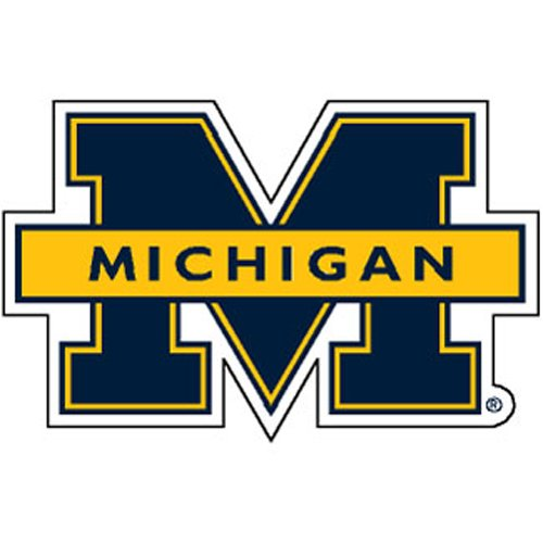 Michigan Wolverines NCAA Precision Cut Magnet by Wincraft