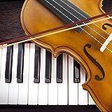 JMFinger 4/4 Full Size Vilion, Handcrafted Acoustic Violin Beginner Kit with Hard Foamed Case, Bow, Rosin, Great for Kids Starters